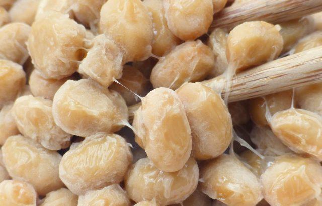 【納豆菌】まだまだある!農業に役立つ納豆菌の効果。炭疽病を抑える、植物の生育を促進する!?|画像1