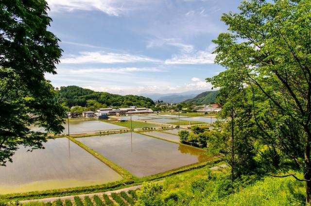 農業と環境の関係。農業と地球環境問題について考える。農業が環境に与える影響とは。 画像4