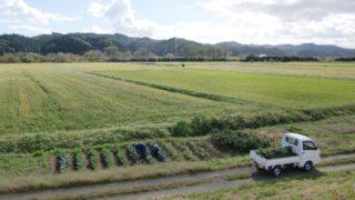 世界の農業大国と日本の農業は何が違うのか